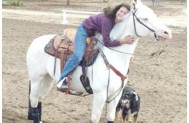 Horse Hoof Problems
